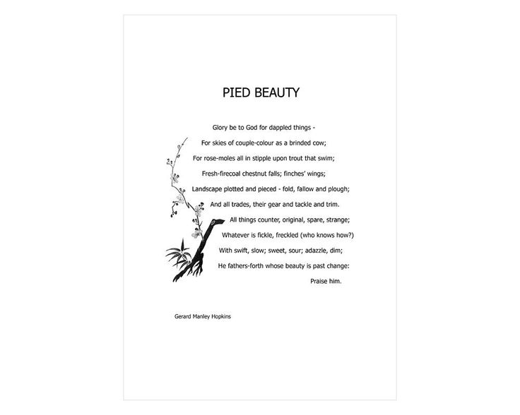 pied beauty by gerard manley hopkins The poem, 'pied beauty' by hopkins, builds up through a description of a variety of beautiful things which either are pied or contain opposites of various.