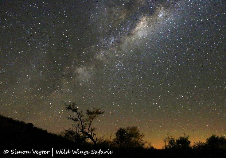 Incredible Milky Way display at Madikwe ... unpolluted night skies for superb star gazing.