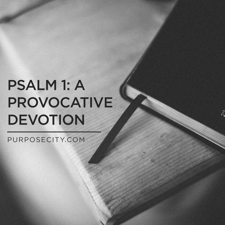 Dan reflects on Psalm 1, sharing how the Law of the Lord doesn't run in opposition to grace, but is foundational to the freedom Jesus provides each and everyone of us. http://purposecity.com/insights/psalm-1-a-provocative-devotion/
