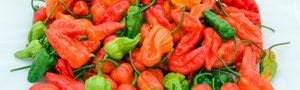 How To Make Hot Sauce - Thrillist