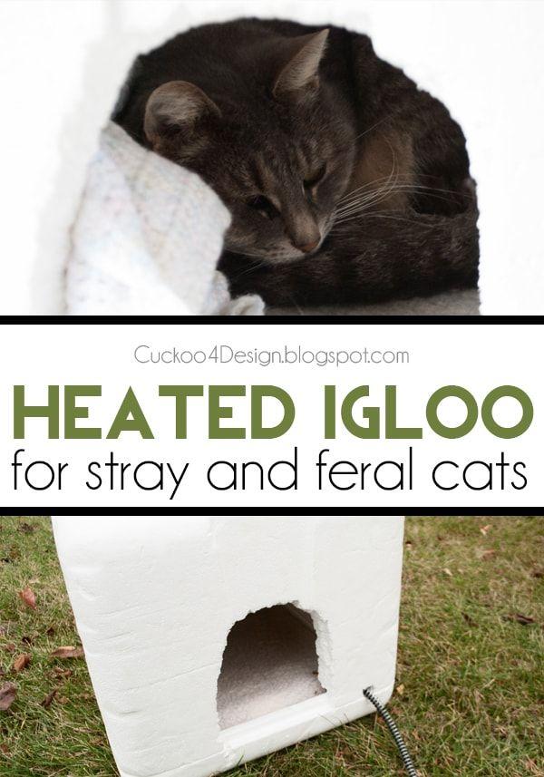 Outdoor Heated Igloo Cat House Cuckoo4design In 2020 Outdoor Cat House Feral Cats Feral Cat Shelter