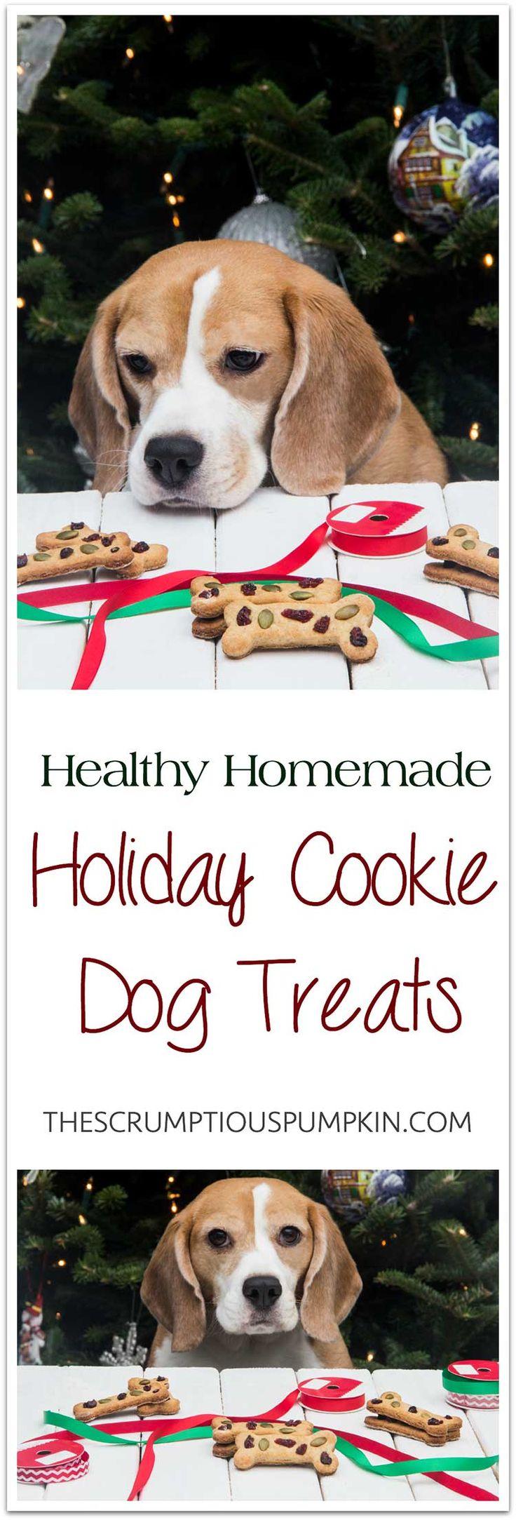 Calvin's Christmas Cookies (dog Treats)