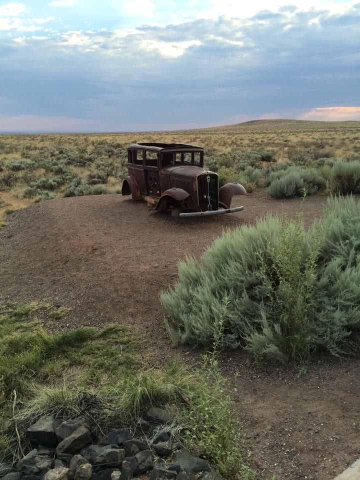 Petrified Forest National Park - A Feast for the Eyes!