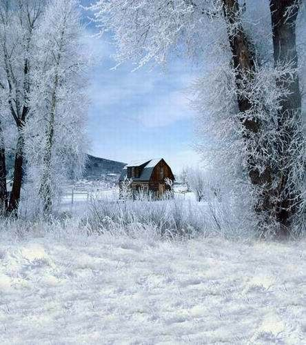 23 Best Snowy Mountain Cabins Scenes Images On Pinterest