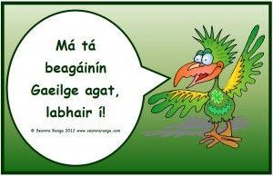 Póstaer: Má tá beagáinín Gaeilge agat, labhair í! #Gaeilge. Beatha teanga í a labhairt.