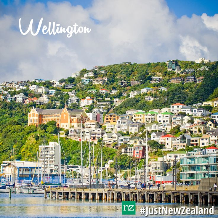 Make sure you visit the coolest little capital in the world, Wellington on your NZ holiday! #nz #newzealand #wellington