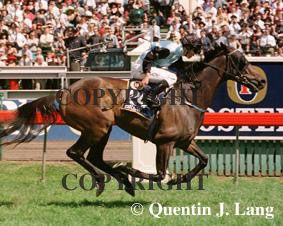 Quentin J. Lang Photography - Melbourne Cup - 2000 Brew