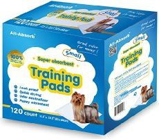 Puppy Pad Training: Housetraining Your New Pet