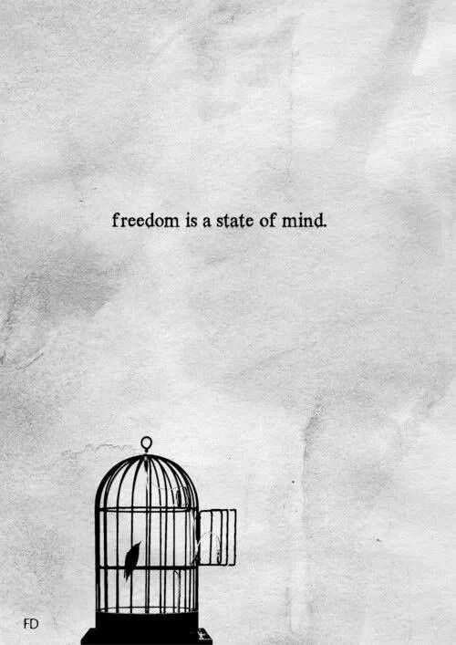 This sums up how I feel about my job at the moment. I work in a factory and I can't wait to be free of the place. I'm very close to getting there and I know it will happen. And then I'll fly my cage.