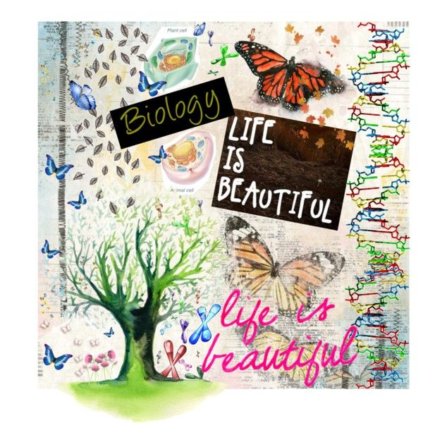 Science Book Cover Ideas : Quot ap biology binder cover by valerie xo on polyvore