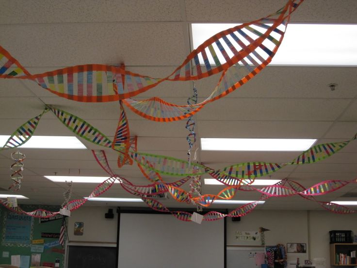 Dna Model with Crepe Paper