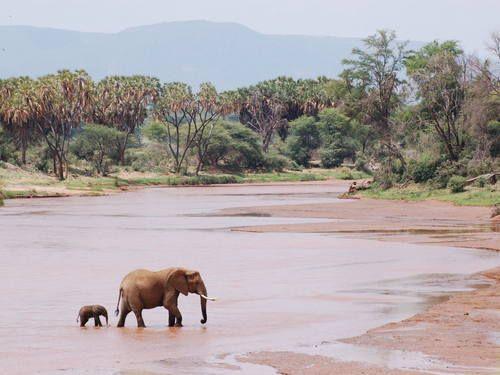 Africa Travel Guide - | http://travel-photos-deontae.blogspot.com