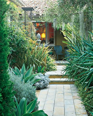 Sandstone walkway to house is flanked on the left by Agave attenuata, 'Goodwin Creek' lavender, and Phormium tenax 'Variegatum' and on the right by Aloe arborescens 'Lutea' and Pittosporum tenuifolium 'Gold Star. Landscape architect Joseph Marek.