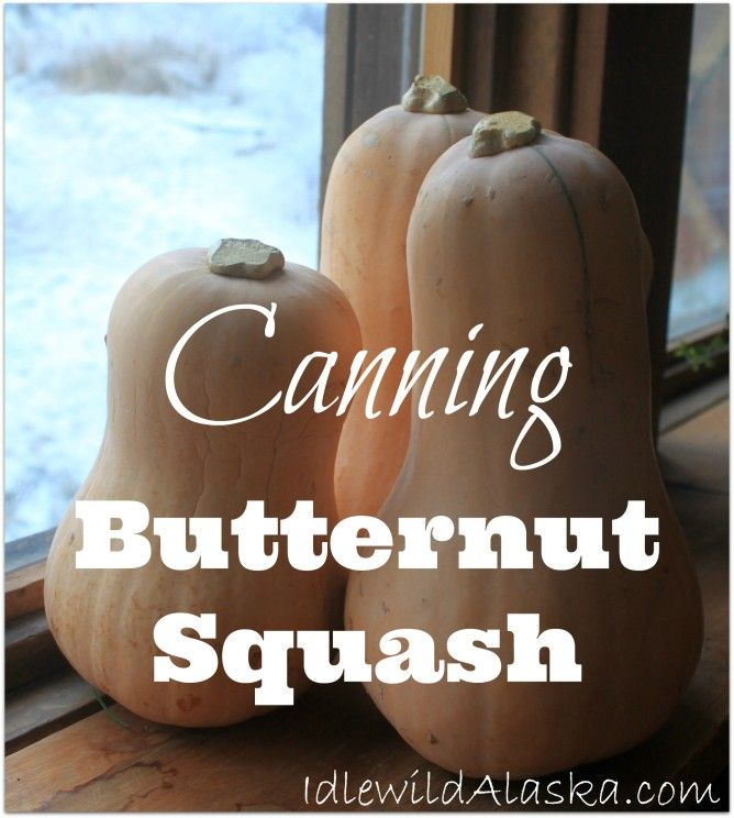 No root cellar to store your winter squash? Check out this easy and healthy recipe for Canning Butternut Squash!