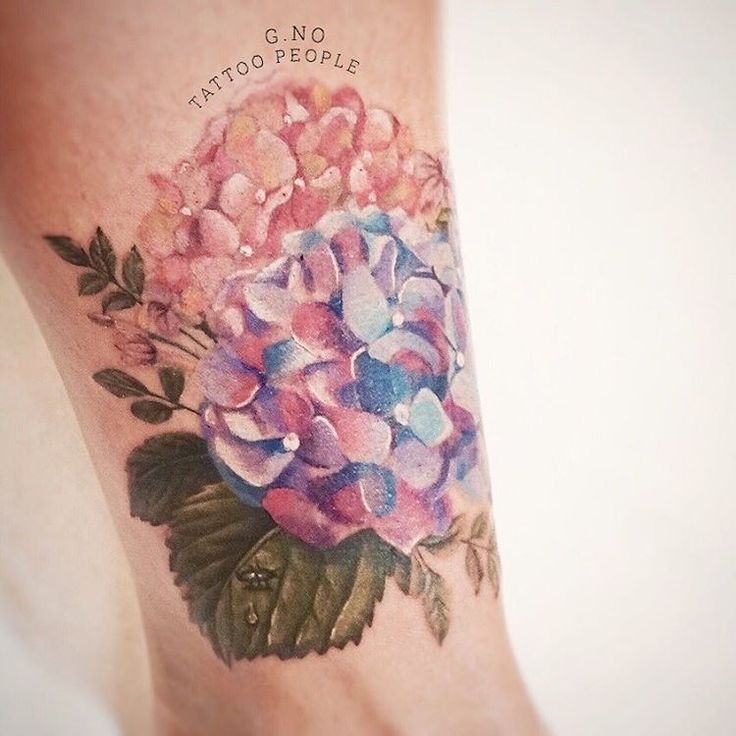 hydrangea tattoo by @gnotattoo • 219 likes