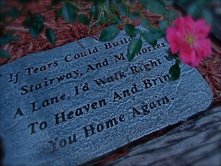 Losing A Father To Cancer Quotes: Pictures Of Losing A Family Member