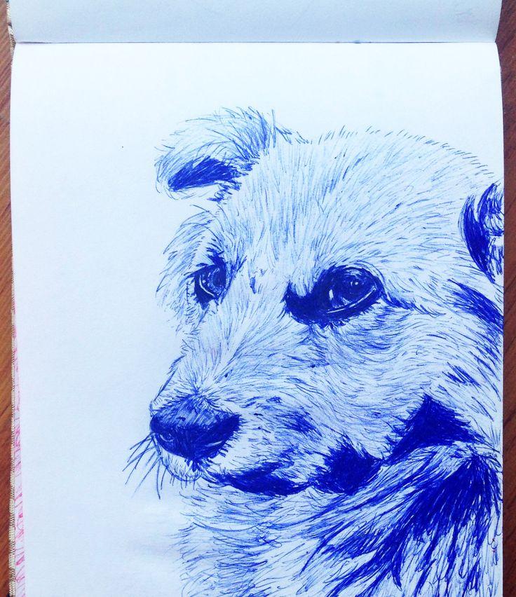 Ilustración en esfero perro guardian