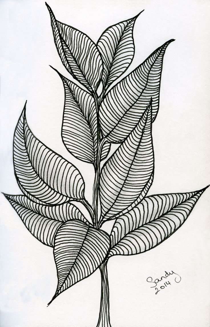 Leaves Zentangle design by Sandy Rosenvinge Lundbye.