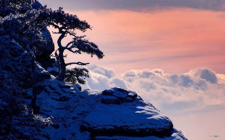 ουρανόσ του χειμώνα διανυσματικό