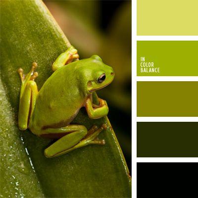 color pera, color verde hierba, color verde lima, color verde oscuro, color verde rana, elección del color, oliva, paleta de colores monocromática, paleta del color verde monocromática, tonos verdes, verde lechuga vivo, verde oliva oscuro, verde vivo.