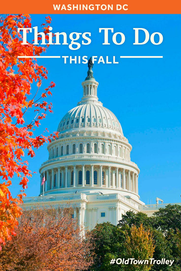 Things to do in Washington DC in the Fall.