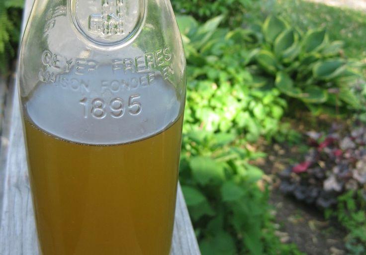Organic limoncello recipe