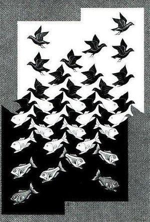 ABRIMUS: Escher e sua Ciência