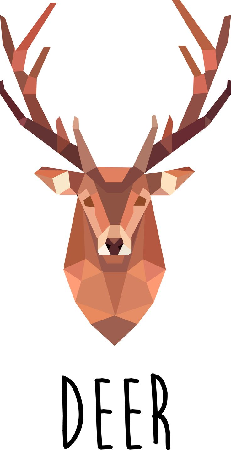 #deer #illustration                                                                                                                                                                                 More
