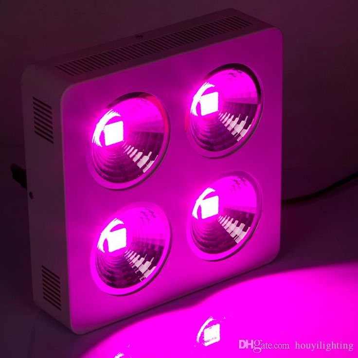 NEW Item Full Spectrum 800w Reflector Led Grow Light for Greenhouse Plant Veg Flower Growth And Blossom US DE Stock Online with $418 /Piece on Houyilighting's Store | DHgate.com http://www.dhgate.com/product/professional-factory-full-spectrum-cob-led/206466084.html#s1-0-1a;searl|670821884
