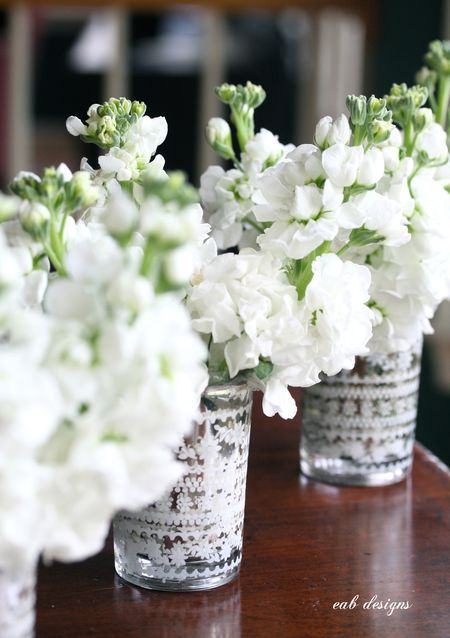 White Stock Centerpieces (stock is cheap, but its a spring flower. Comes in a couple colors I believe)