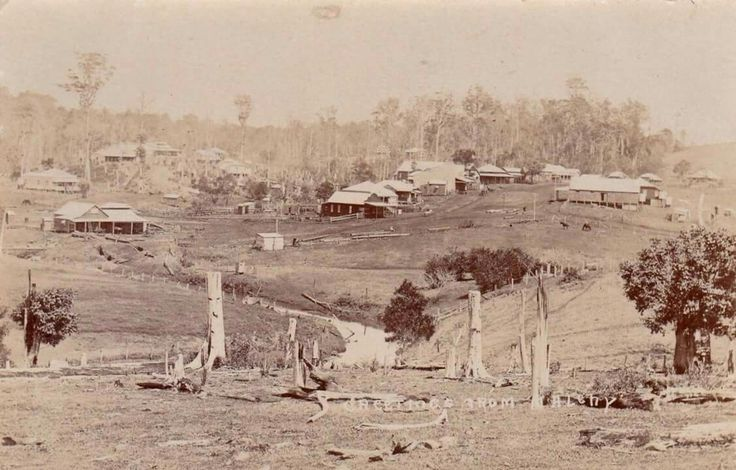 Maple St,Maleny in Queensland in the very early 1900s. 🌹