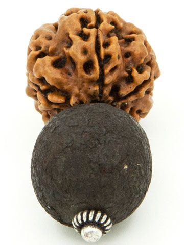 Nazar Battu: a black coloured indian fruit tied with rudraksha which wards of bad eyes and bad energies from person.