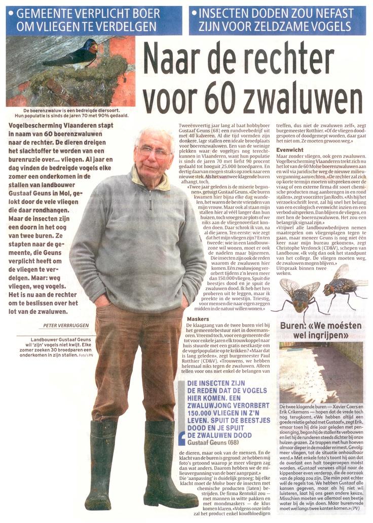Boer Geuns en zijn kolonie boerenzwaluwen in het Laatste Nieuws.