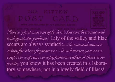product-information-page-postcard-story
