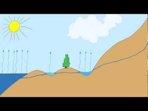 Kringloop van het water: bekijk het filmpje en vertel er zelf bij.