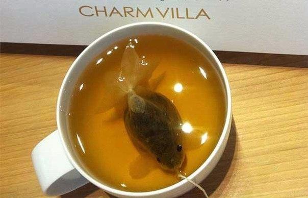 Чайные пакетики в форме золотой рыбки)