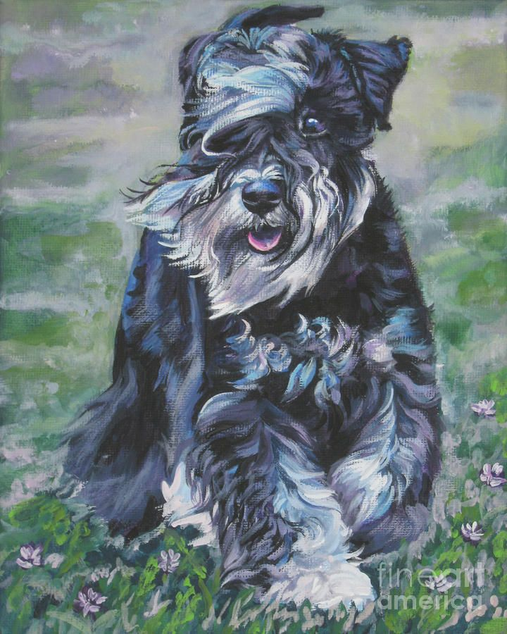 I Love My Dog Schnauzer Animal Lover T Shirt Design T: 1000+ Images About Schnauzer Heaven On Pinterest