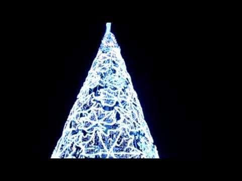 Iluminación Navidad Árbol   www.electromiño.es  Uno de nuestros muchos árboles realizados en micro led para decorar las ciudades, localidades con un árbol gigante de led en forma de hojas secas y lágrimas. Instalado en Ferrol  #electromiño #CiudadesNavidad #Vigo #Galicia #Navidad #Alumbrado #AlumbradoNavidad #EncendidoLuces #NavidadenlaCiudad #Leds #led #navidades #estrella #arcosdeluz #ferrol
