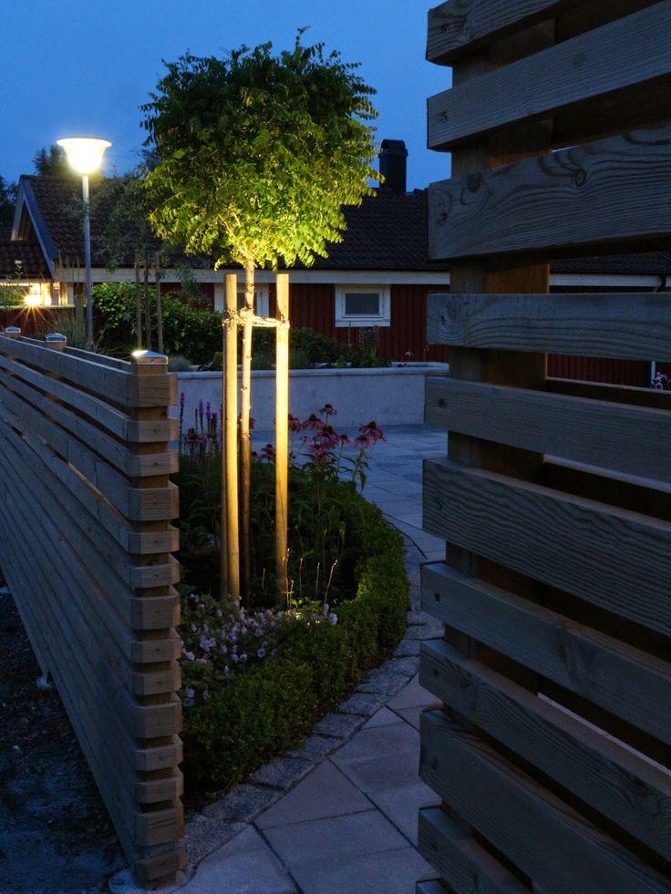 Trädgårdsblogg om en nyligen renoverad sluttningsträdgård på 387 kvadratmeter.