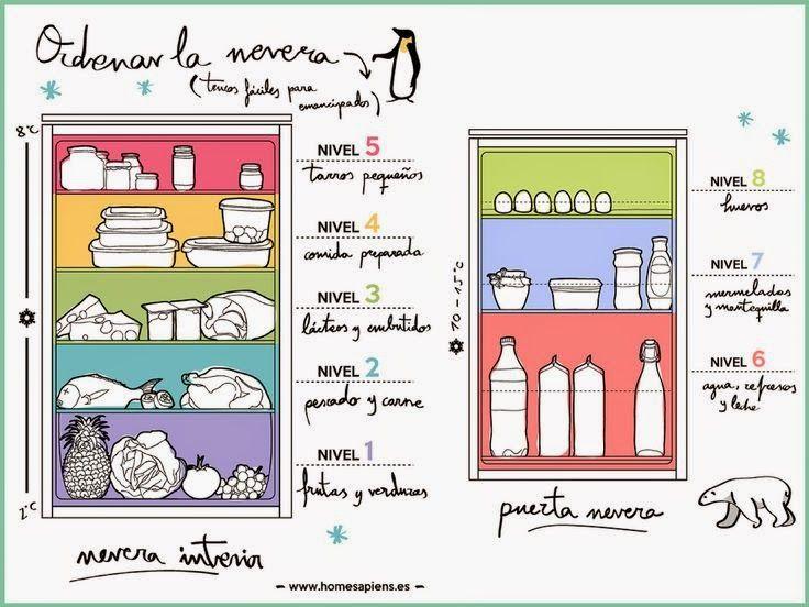 Aprende cómo optimizar el espacio de tu refrigerador y organizar cada uno de tus alimentos para mantenerlos en las mejores condiciones.