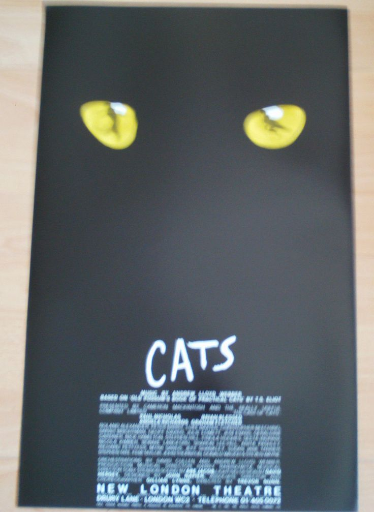 Cats the Andrew Lloyd Webber's smash hit musical opened at the New London Theatre. Starred Paul Nicholas, Brian Blessed, Sarah Brightman, Bonnie Langford to name but a few.