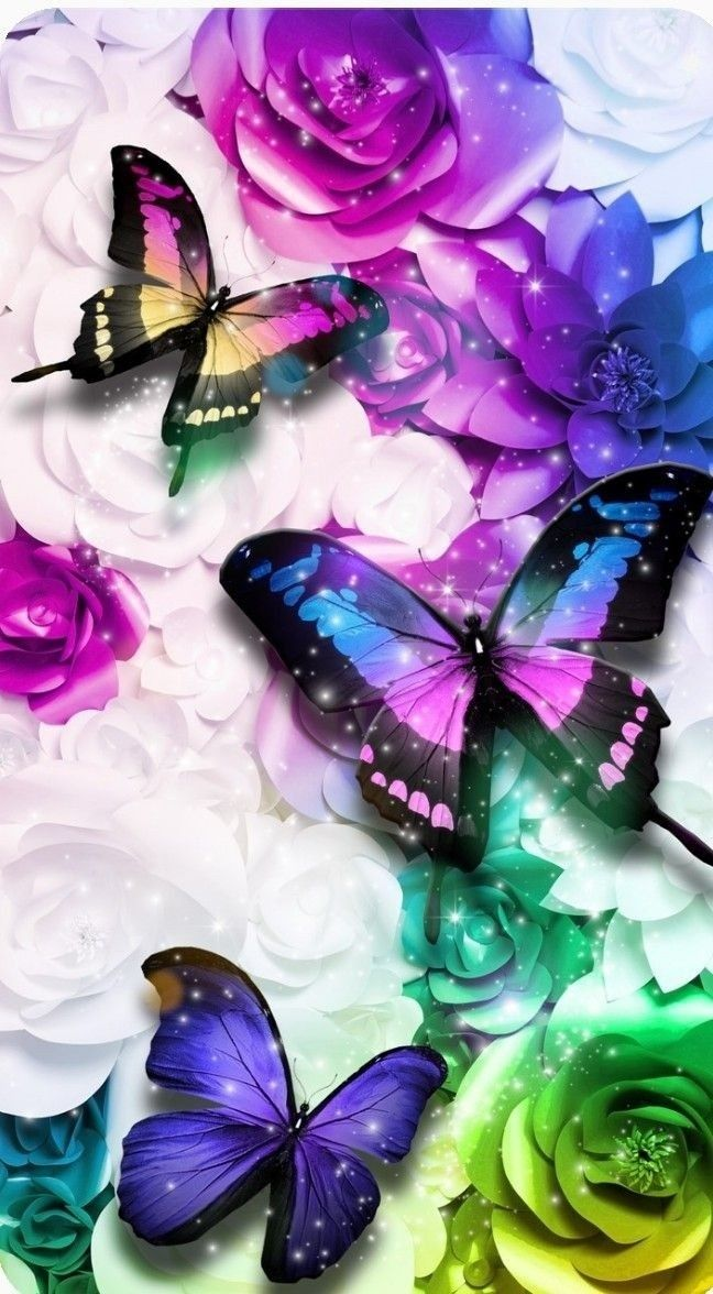 Pin by 𝓜𝓲𝔃𝓴𝓪𝔂𝓽 on Butterflay Wallpaper   Butterfly ...