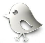 Silver Bird Brooch