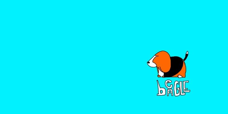 Beagle.-