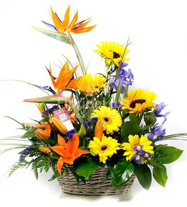 Cele mai frumoase cadouri pentru mediul corporate! Ce cadou poti sa trimiti sefului tau sau unor parteneri importanti!
