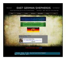 thumbnail of  THe EAST GERMAN SHEPHERDS DDR