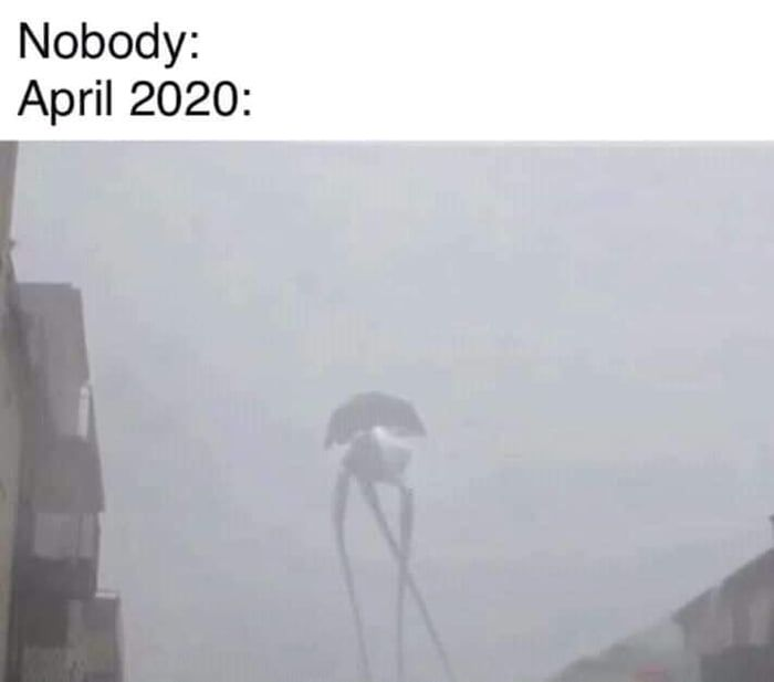 Get Ready For April 2020 Best Funny Pictures Memes Profile Picture