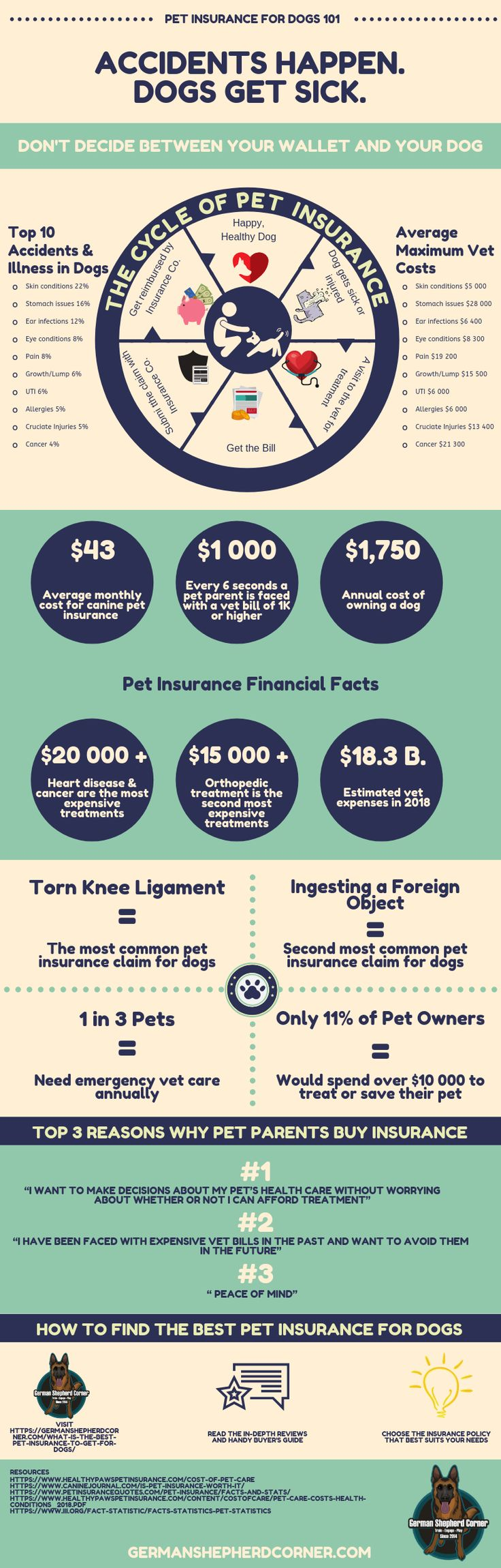 What is the Best Pet Insurance to Get for Dogs Best pet