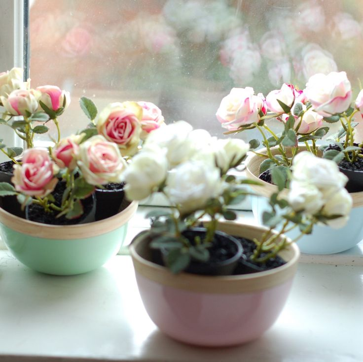 Loveliest of lasting mini roses in pastel wooden bowls
