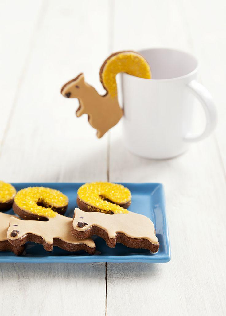 Biscotti a forma di scoiattolo prendi tazza, squirrel cookies #squirrel #cookies #biscotti #colazione #idolcettidipaola #leitv